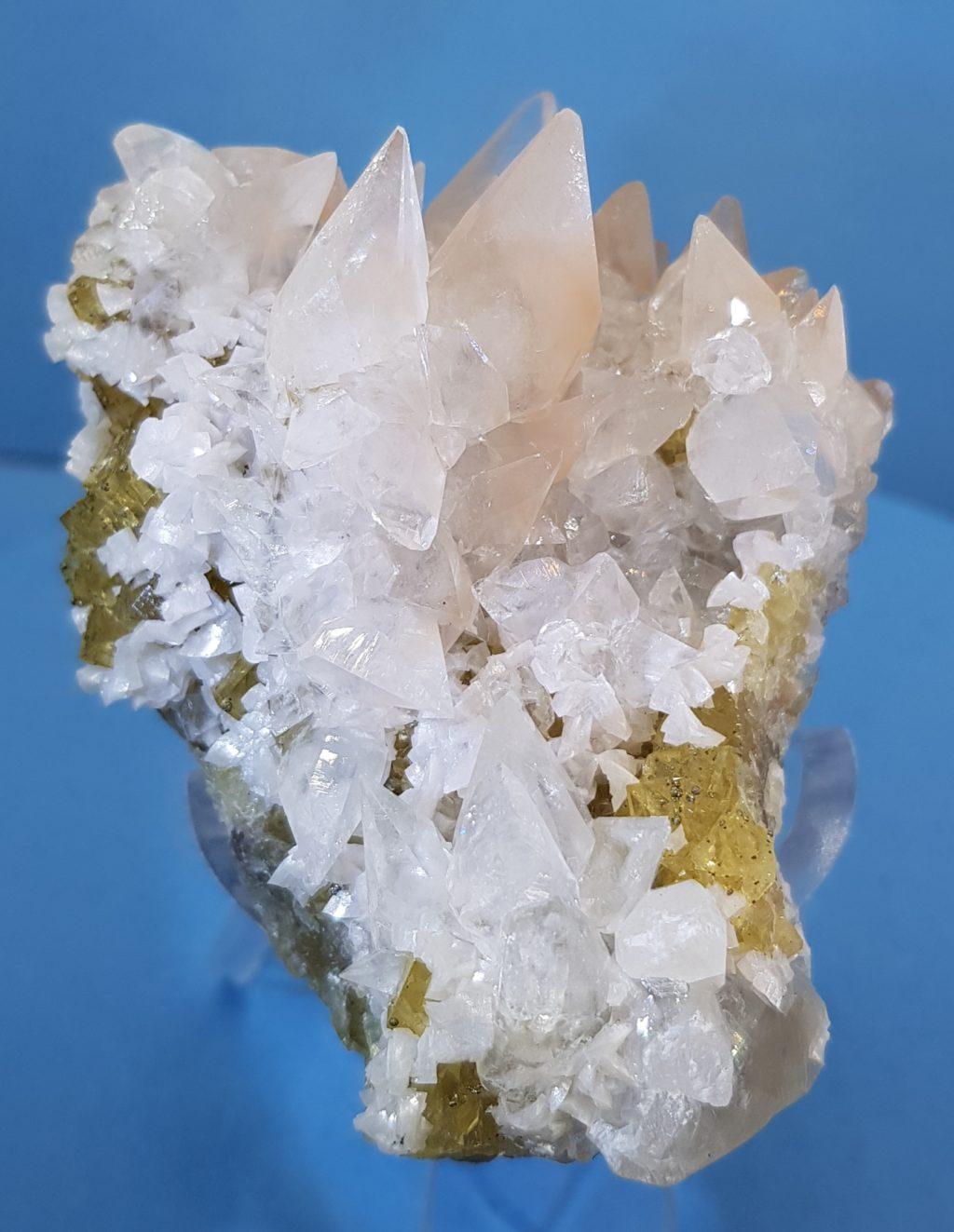MT223-CALC-FLUO-SPA 1